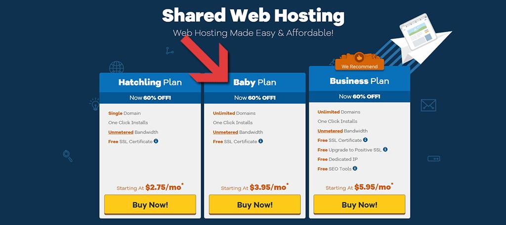 domain hosting plan